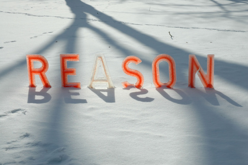 feminist essays on reason and objectivity